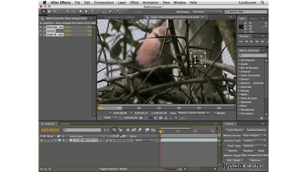 Stabilizing shaky footage: After Effects CS4 Essential Training