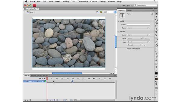 Animating bitmaps: Flash CS4 Professional Essential Training