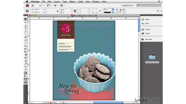 Understanding the Application window: InDesign CS4 Essential Training