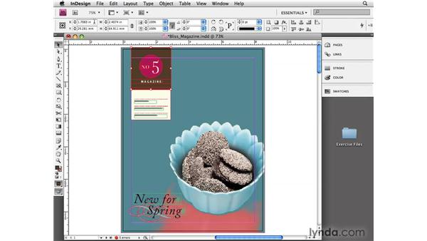 Setting rulers and measurements: InDesign CS4 Essential Training
