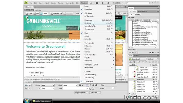 Windows and Mac interface differences: Dreamweaver CS4 Essential Training