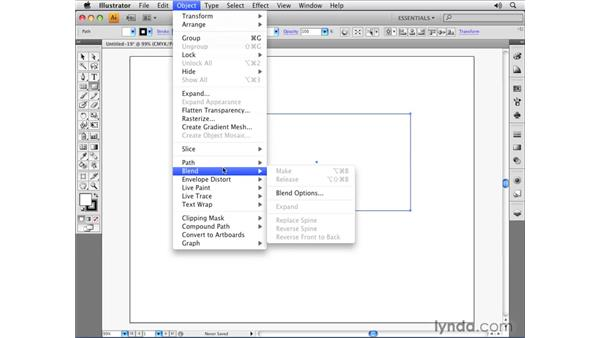 Dividing an object into a grid: Illustrator CS4 Essential Training