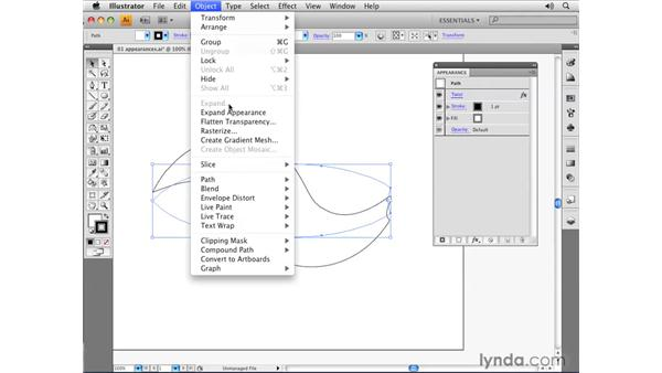 Expanding appearances: Illustrator CS4 Essential Training