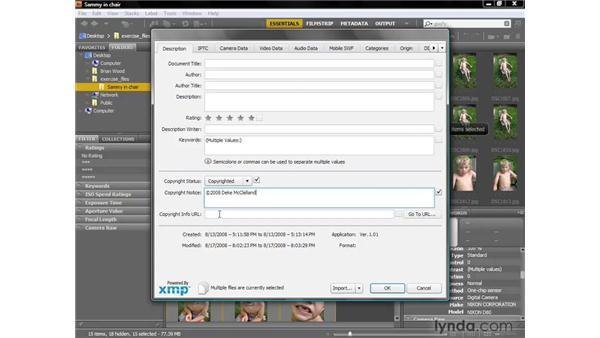 Metadata essentials: Photoshop CS4 Getting Started