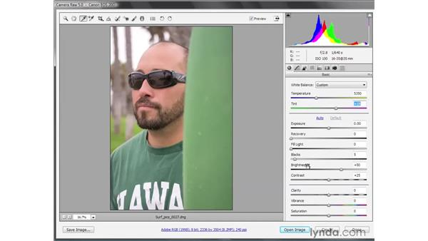 Developing raw photos: Photoshop CS4 Getting Started