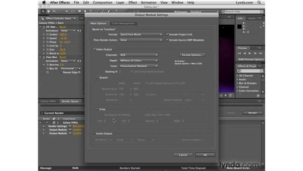 Easy output to multiple formats: After Effects CS4 New Features