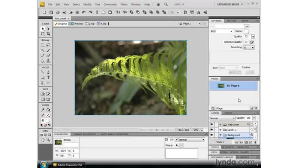 Navigating the new Adobe interface: Fireworks CS4 New Features