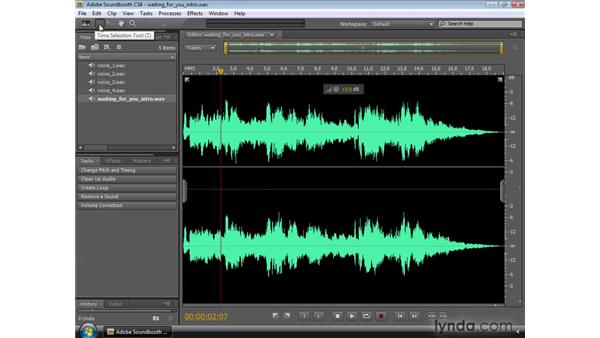 Using the Tools and Files panels: Soundbooth CS4 Essential Training