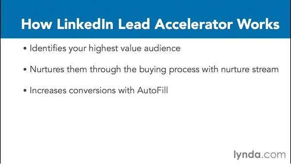 Lead Accelerator: LinkedIn Advertising Fundamentals