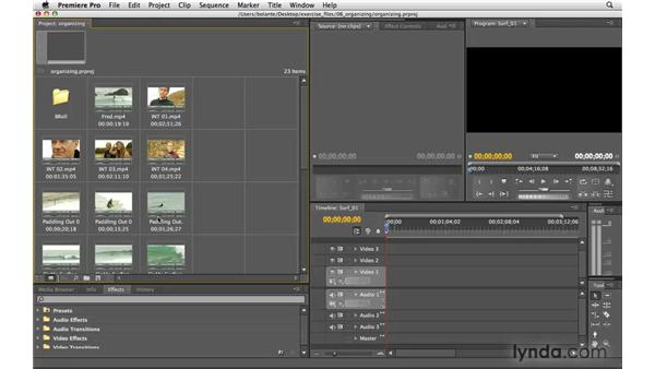 Viewing items in the Project panel: Premiere Pro CS4 Essential Training
