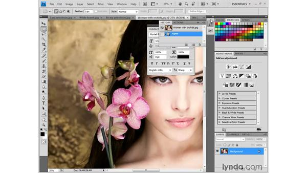 Working with panels: Photoshop CS4 New Features
