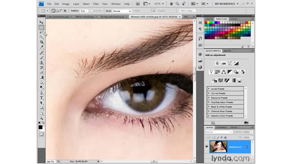 Navigation and OpenGL: Photoshop CS4 New Features