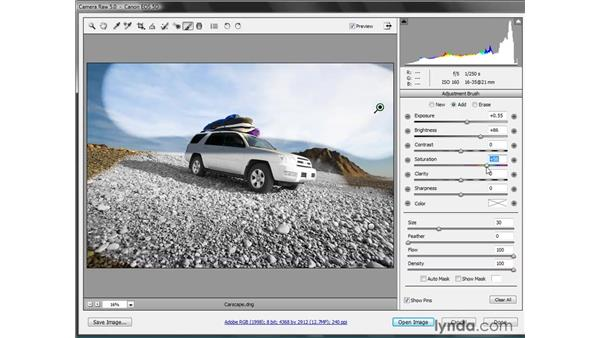 Camera Raw 5.0: Photoshop CS4 New Features