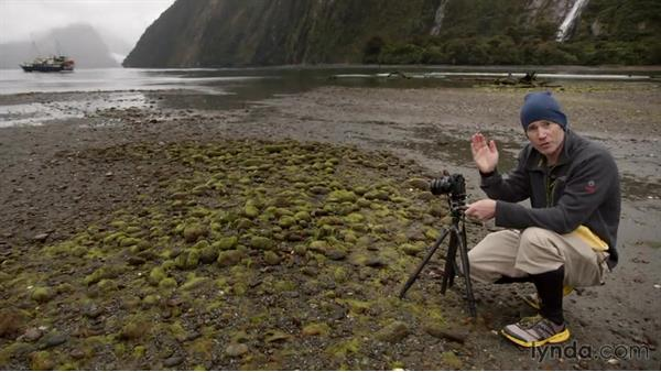 Setting up the first shots of the fjords: Photographing the Fjords of New Zealand