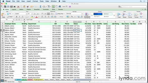 Using custom lists for rapid data entry and list-based sorting: Excel for Mac 2011 Tips and Tricks