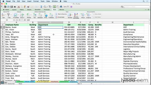 Displaying unique items from large lists: Excel for Mac 2011 Tips and Tricks