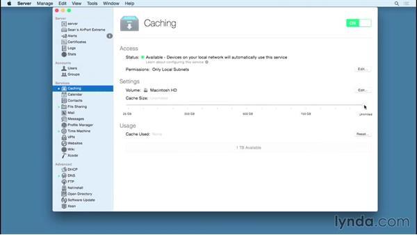 Welcome: OS X Server Essential Training: Yosemite Edition