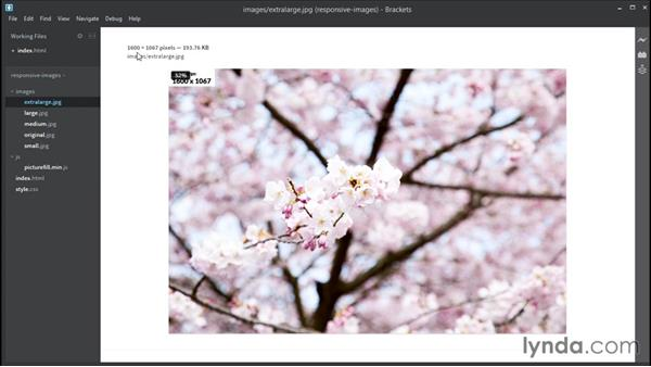 Using srcset and w: Responsive Images