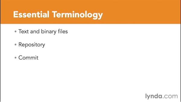 Introducing essential terminology: Version Control for Everyone