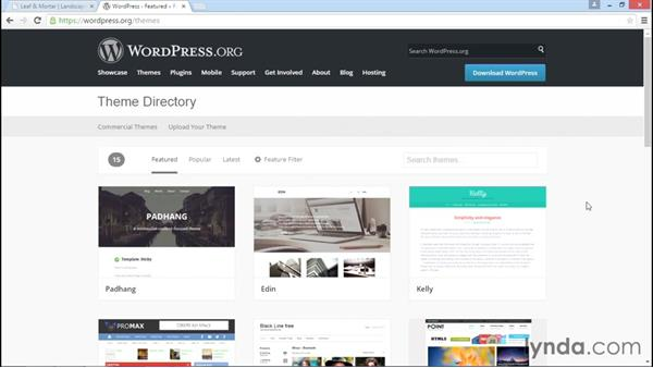 Finding a theme that meets your needs: WordPress DIY: Small Business Website