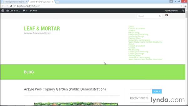 Installing and activating Kage Green: WordPress DIY: Small Business Website