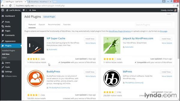 Finding plugins that meet your needs: WordPress DIY: Small Business Website
