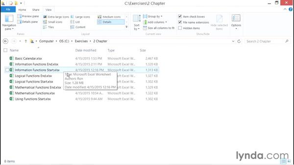 Using the exercise files: Excel Power Pivot DAX in Depth