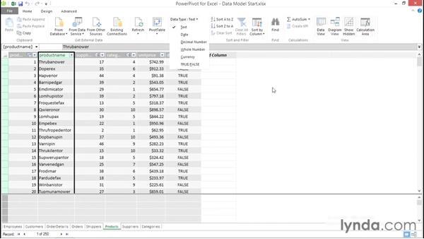 Exploring the Power Pivot data model: Excel Power Pivot DAX in Depth