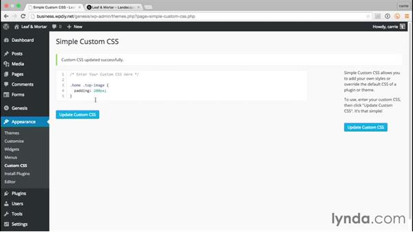 Finishing touches with Simple Custom CSS: WordPress and Genesis DIY: Small Business Website
