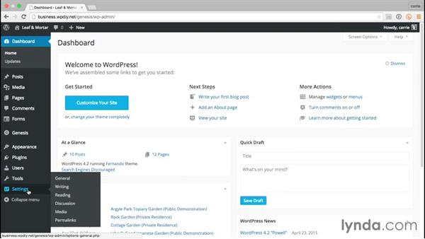 Testing the site before going live: WordPress and Genesis DIY: Small Business Website
