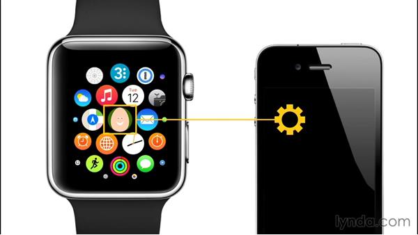 Watch application architecture: Developing for Apple Watch First Look