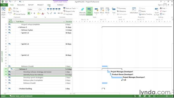 Creating nonfeature tasks for sprints: Agile Project Management with Microsoft Project