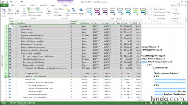 Updating feature progress: Agile Project Management with Microsoft Project