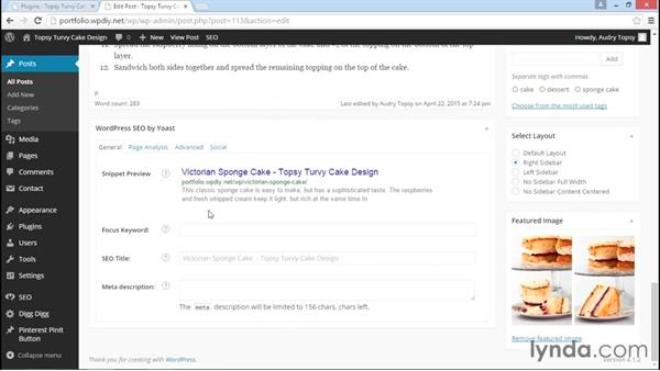 Controlling SEO and social sharing text: WordPress DIY: Freelance/Independent Website