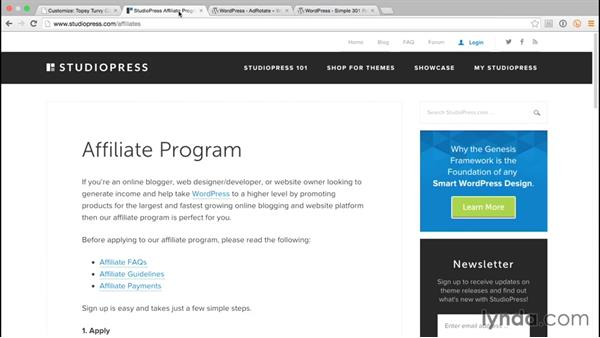 Adding affiliate banners: WordPress and Genesis DIY: Freelance/Independent Website