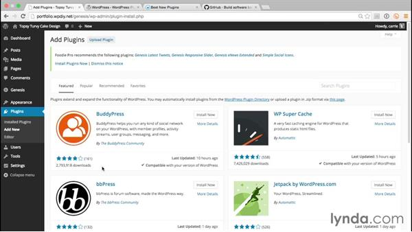 Finding plugins that meet your needs: WordPress and Genesis DIY: Freelance/Independent Website
