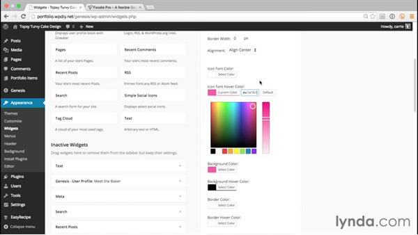 Configuring Simple Social Icons: WordPress and Genesis DIY: Freelance/Independent Website