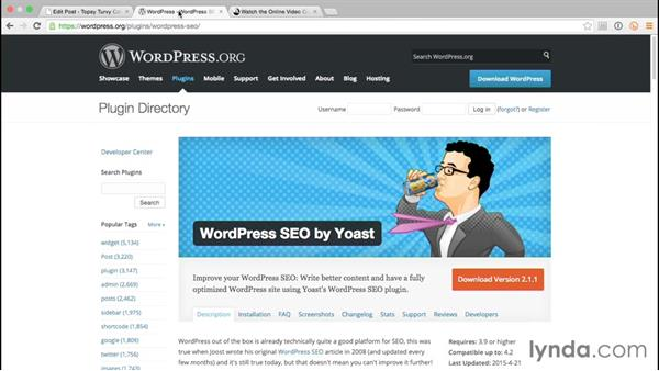 Getting people to visit your site: WordPress and Genesis DIY: Freelance/Independent Website