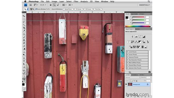 Working with the Application bar: Photoshop CS4 for Photographers