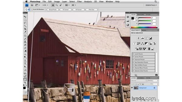 Navigating with the Hand and Zoom tools: Photoshop CS4 for Photographers