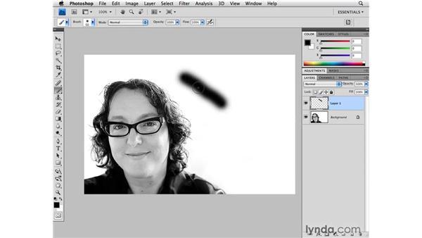 Performance preferences: Cursor: Photoshop CS4 for Photographers