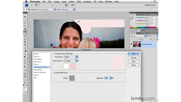 Performance preferences: Transparency and Gamut: Photoshop CS4 for Photographers