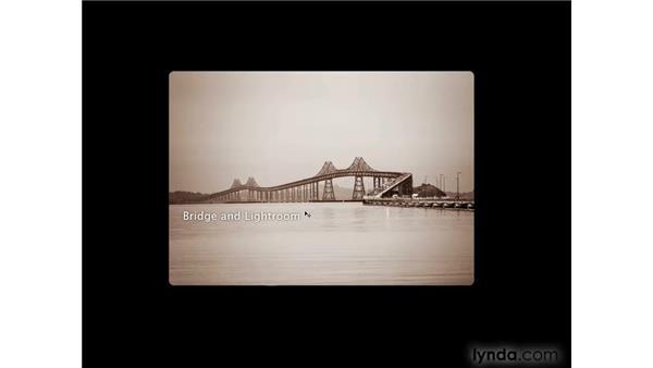 Using Photoshop, Bridge, and Lightroom together: Photoshop CS4 for Photographers