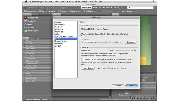 Advanced and Cache Bridge preferences: Photoshop CS4 for Photographers