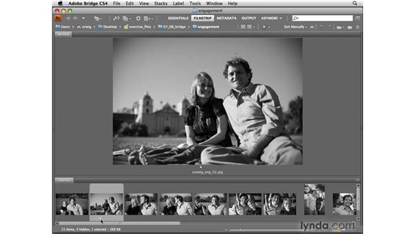 Using Bridge to rate and sort: Photoshop CS4 for Photographers
