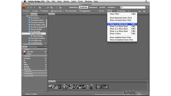 Sorting with filters: Photoshop CS4 for Photographers