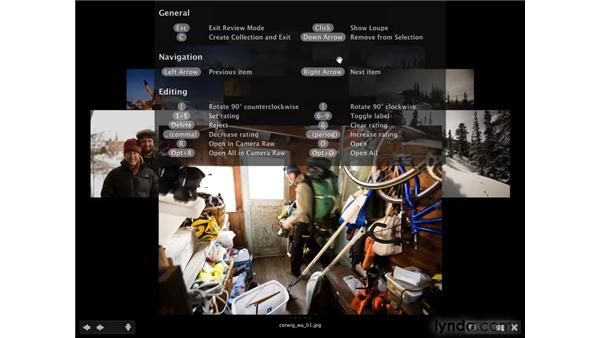 The Bridge Review mode: Photoshop CS4 for Photographers