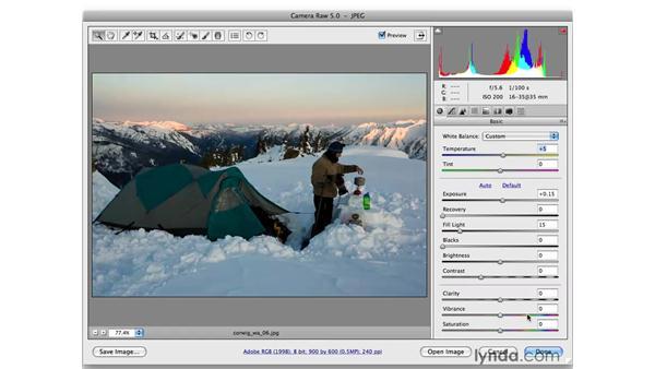 The Bridge Full Screen mode: Photoshop CS4 for Photographers