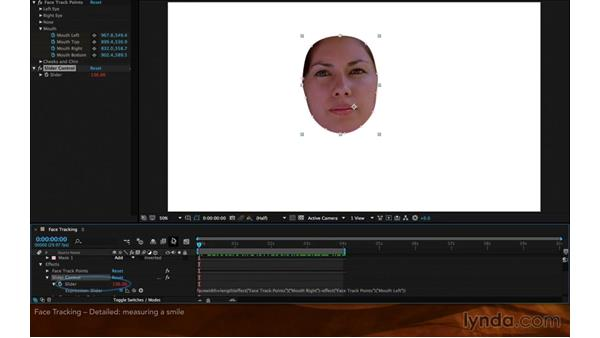 Face tracking: Detailed features: After Effects: 2015 Creative Cloud Updates