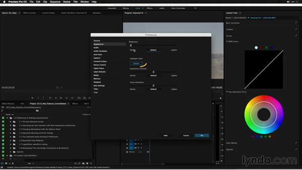 Improving the user interface with new appearance preferences: Premiere Pro: 2015 Creative Cloud Updates
